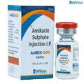 AMBIX 500